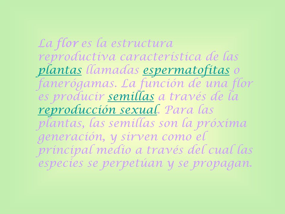 La flor es la estructura reproductiva característica de las plantas llamadas espermatofitas o fanerógamas. La función de una flor es producir semillas
