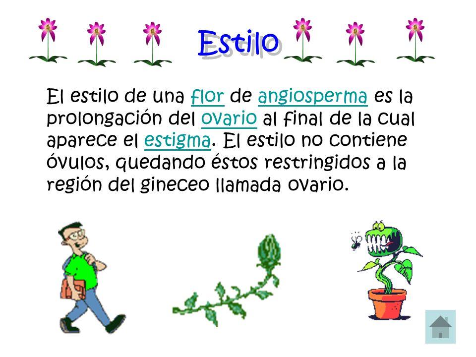 Estilo El estilo de una flor de angiosperma es la prolongación del ovario al final de la cual aparece el estigma. El estilo no contiene óvulos, quedan