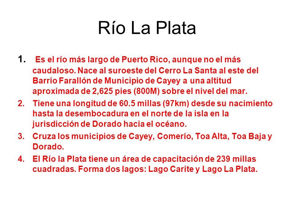 Río La Plata 1. Es el río más largo de Puerto Rico, aunque no el más caudaloso. Nace al suroeste del Cerro La Santa al este del Barrio Farallón de Mun