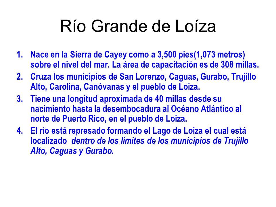 Río Grande de Loíza 1.Nace en la Sierra de Cayey como a 3,500 pies(1,073 metros) sobre el nivel del mar. La área de capacitación es de 308 millas. 2.C