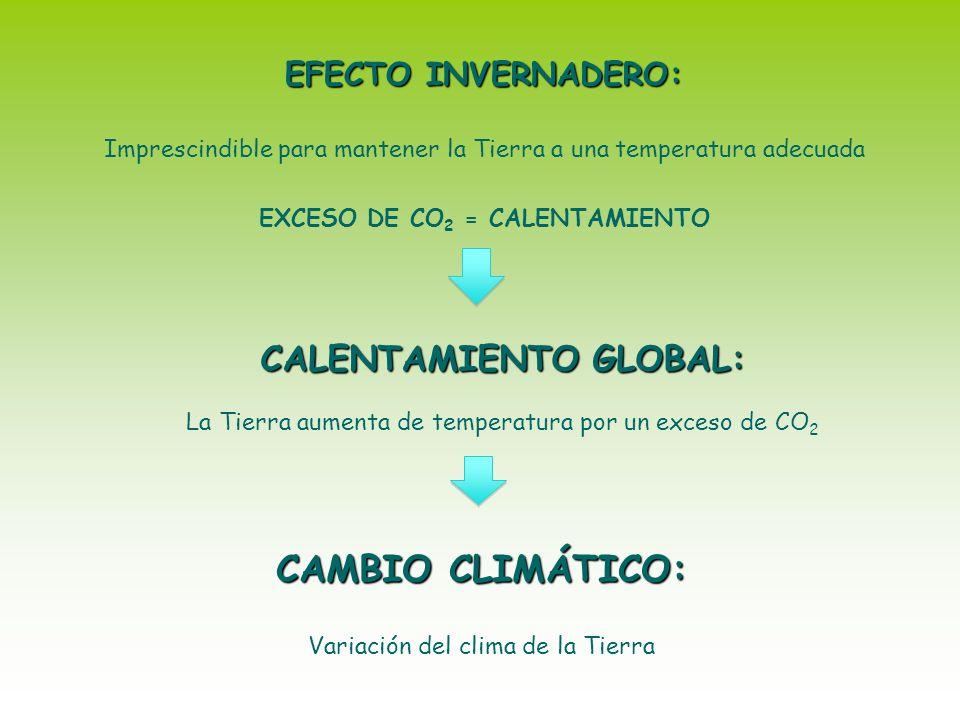 CAMBIO CLIMÁTICO: Variación del clima de la Tierra EFECTO INVERNADERO: Imprescindible para mantener la Tierra a una temperatura adecuada EXCESO DE CO