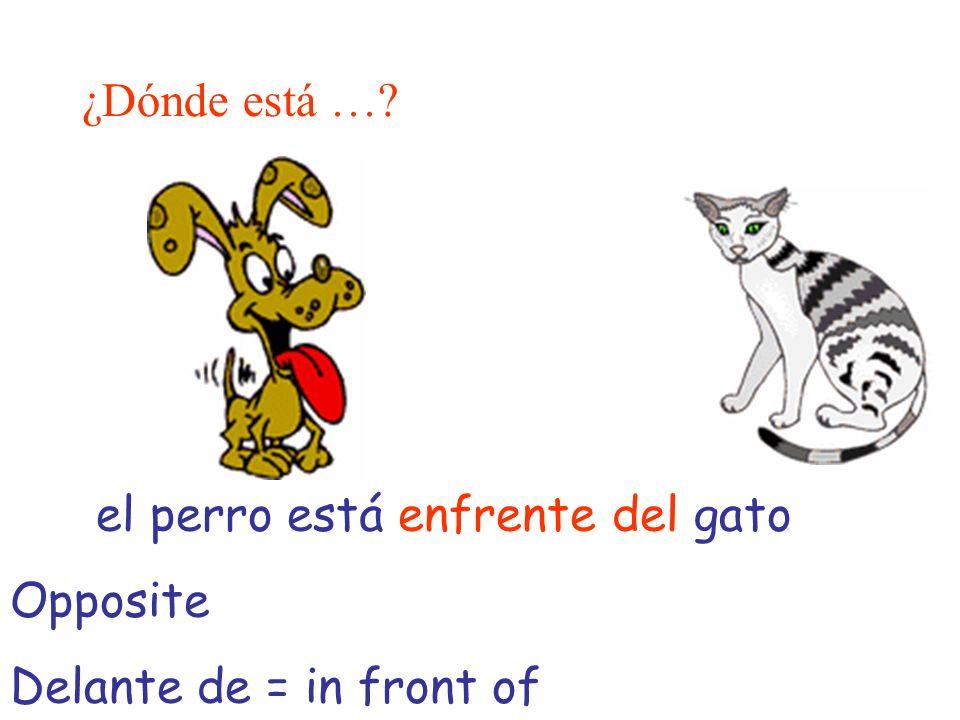 ¿Dónde está …? el perro está enfrente del gato Opposite Delante de = in front of