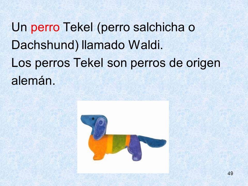 49 Un perro Tekel (perro salchicha o Dachshund) llamado Waldi. Los perros Tekel son perros de origen alemán.