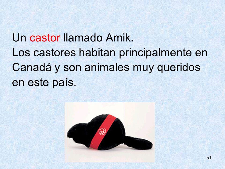 51 Un castor llamado Amik. Los castores habitan principalmente en Canadá y son animales muy queridos en este país.
