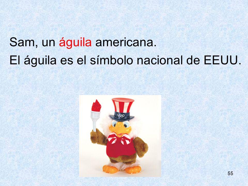 55 Sam, un águila americana. El águila es el símbolo nacional de EEUU.