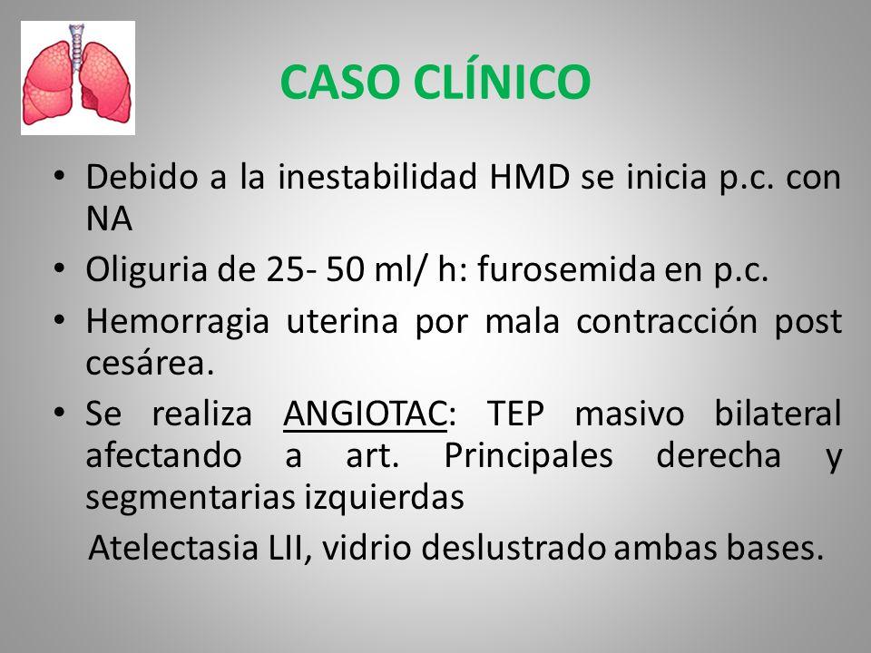 CASO CLÍNICO Debido a la inestabilidad HMD se inicia p.c. con NA Oliguria de 25- 50 ml/ h: furosemida en p.c. Hemorragia uterina por mala contracción