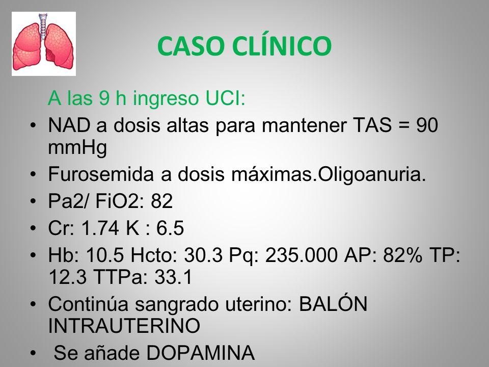 CASO CLÍNICO A las 9 h ingreso UCI: NAD a dosis altas para mantener TAS = 90 mmHg Furosemida a dosis máximas.Oligoanuria. Pa2/ FiO2: 82 Cr: 1.74 K : 6