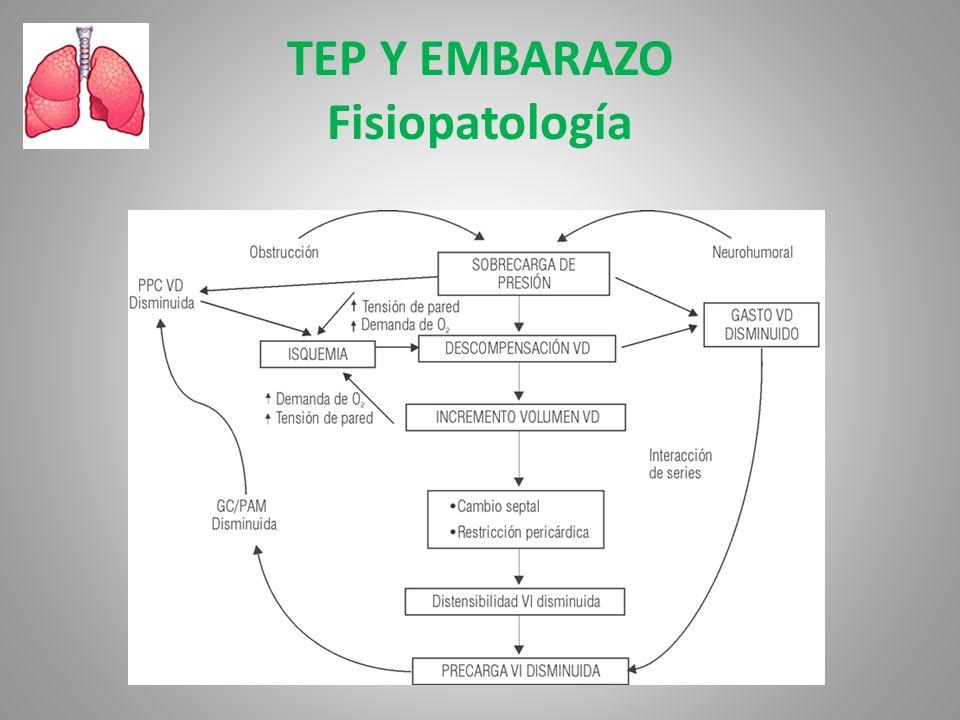 TEP Y EMBARAZO Fisiopatología