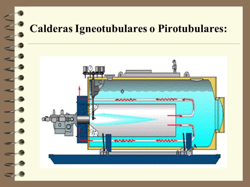 Calderas Igneotubulares o Pirotubulares: