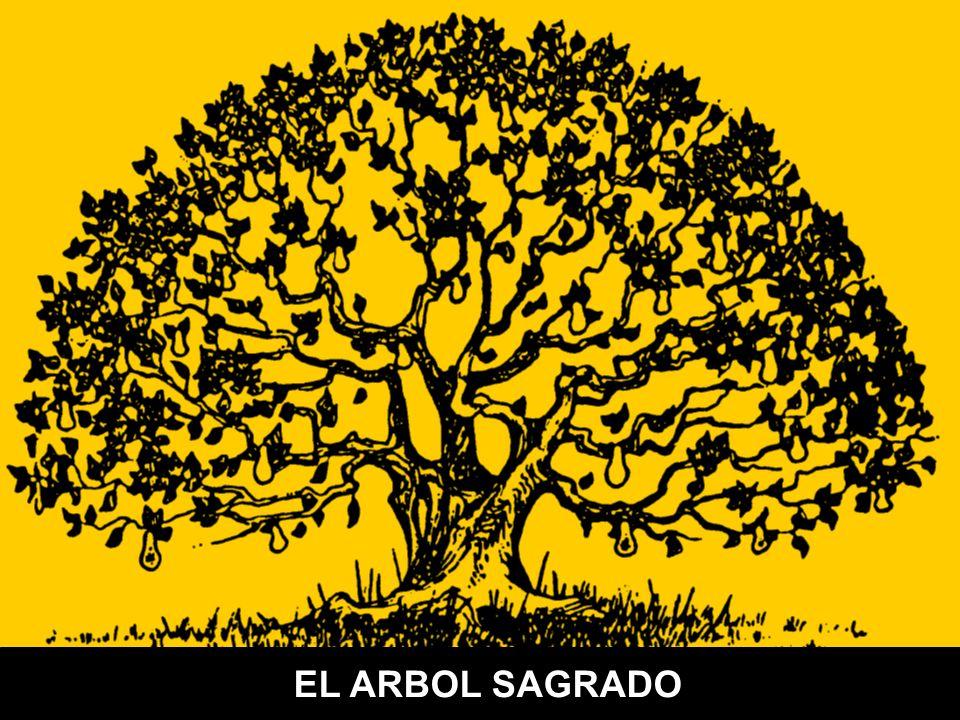 Sistema de información (Hojas) Capital estructural (Tronco) Capital humano (Raíces)