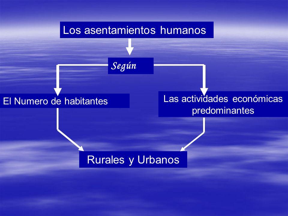 Los asentamientos humanos Según El Numero de habitantes Las actividades económicas predominantes Rurales y Urbanos