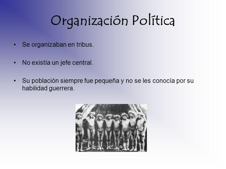 Organización Política Se organizaban en tribus. No existía un jefe central. Su población siempre fue pequeña y no se les conocía por su habilidad guer