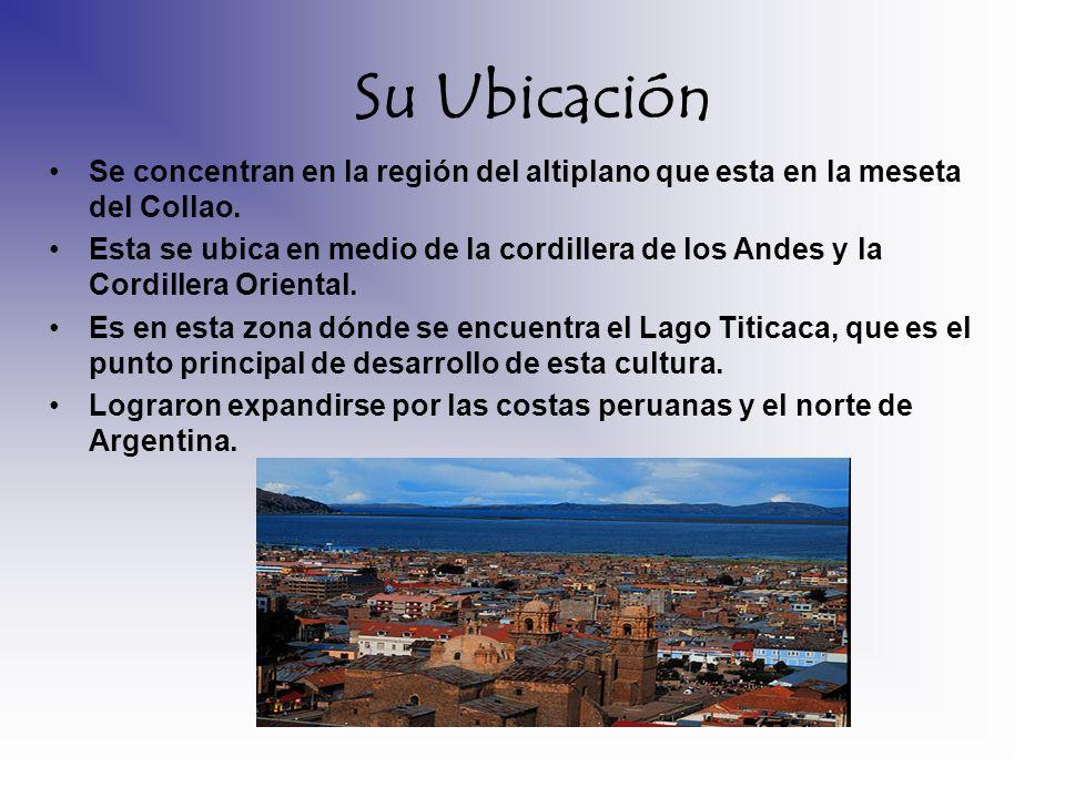 Su Ubicación Se concentran en la región del altiplano que esta en la meseta del Collao. Esta se ubica en medio de la cordillera de los Andes y la Cord