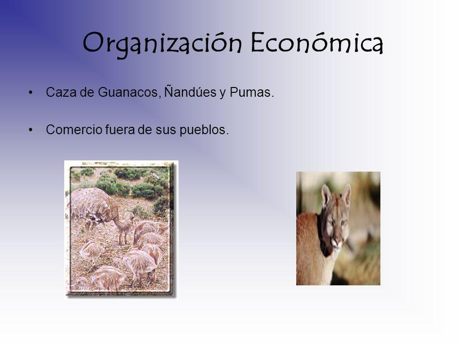 Organización Económica Caza de Guanacos, Ñandúes y Pumas. Comercio fuera de sus pueblos.