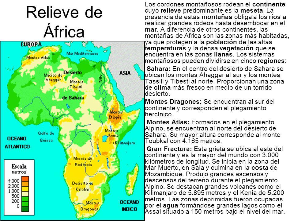 Relieve de África Los cordones montañosos rodean el continente cuyo relieve predominante es la meseta. La presencia de estas montañas obliga a los río