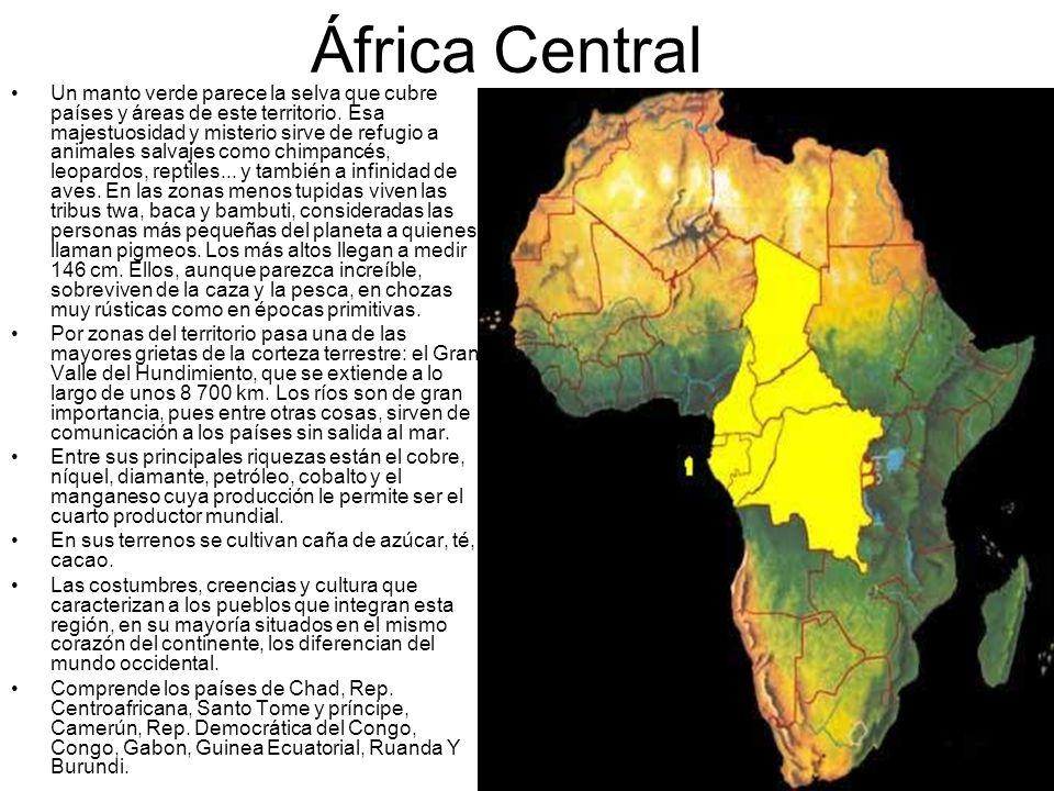 África Central Un manto verde parece la selva que cubre países y áreas de este territorio. Esa majestuosidad y misterio sirve de refugio a animales sa
