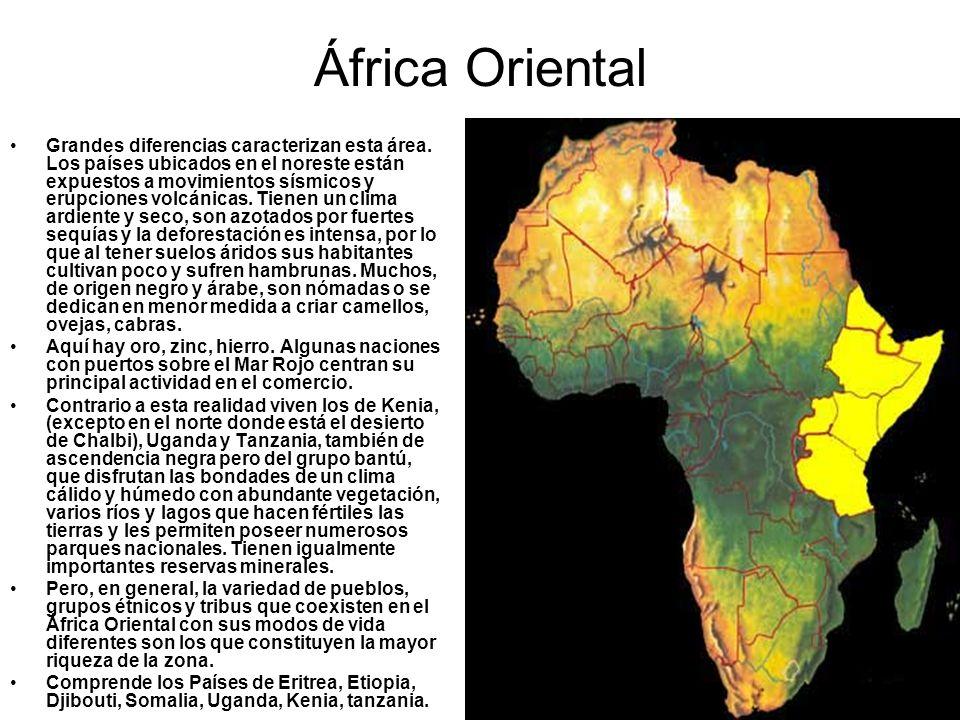 África Oriental Grandes diferencias caracterizan esta área. Los países ubicados en el noreste están expuestos a movimientos sísmicos y erupciones volc