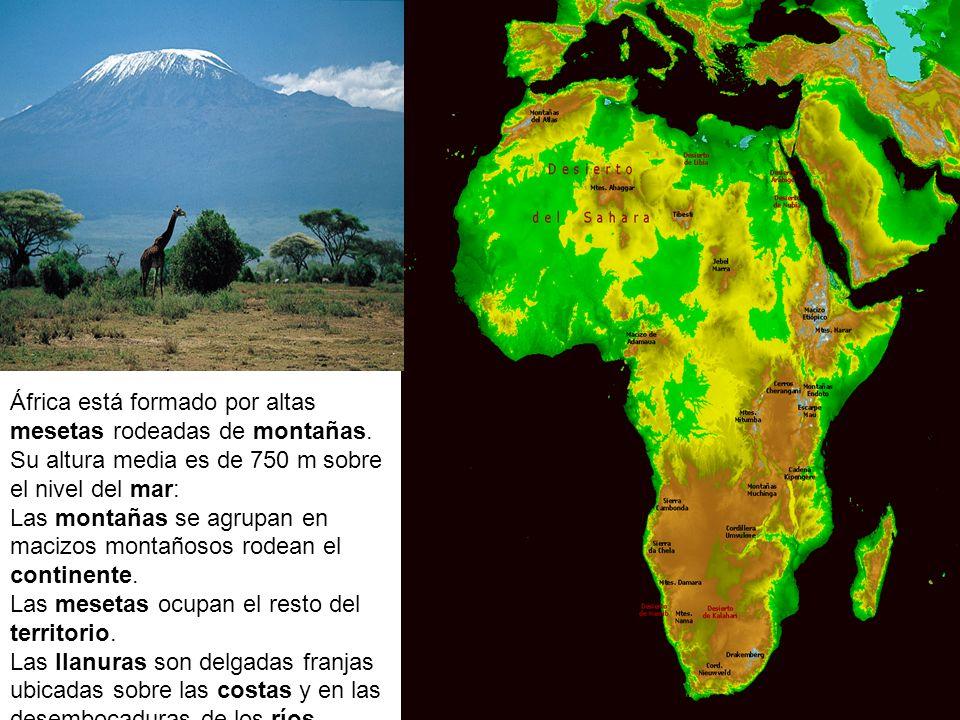 Relieve de África África está formado por altas mesetas rodeadas de montañas. Su altura media es de 750 m sobre el nivel del mar: Las montañas se agru