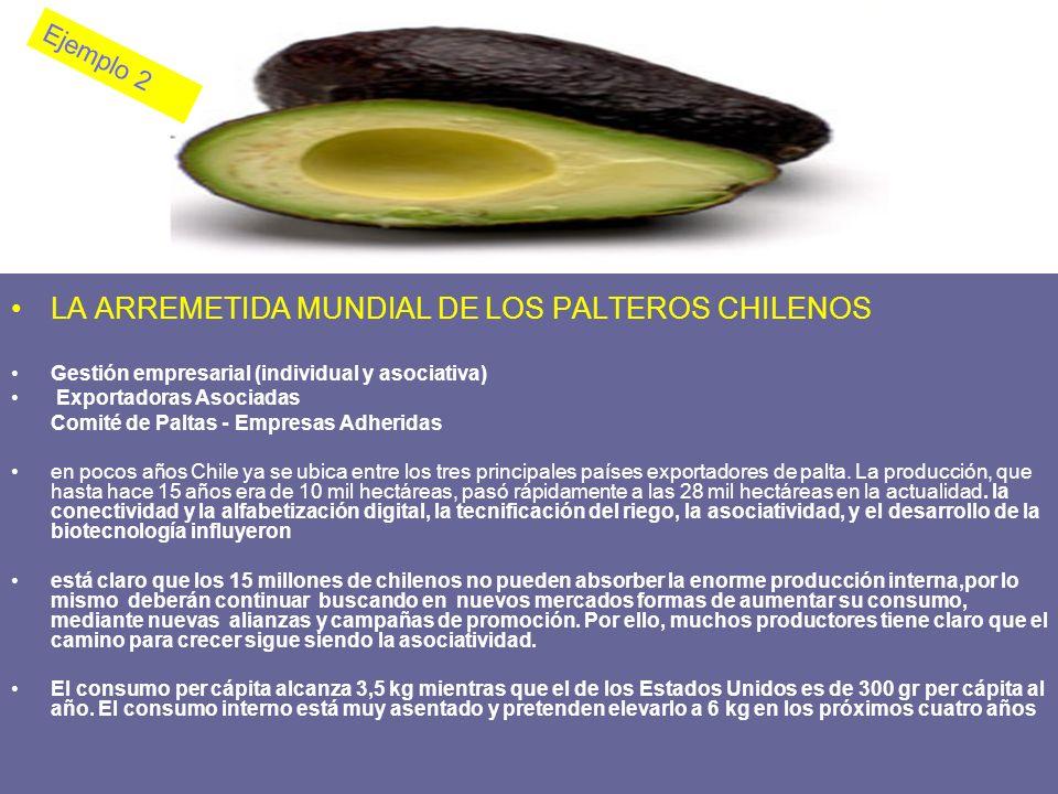 LA ARREMETIDA MUNDIAL DE LOS PALTEROS CHILENOS Gestión empresarial (individual y asociativa) Exportadoras Asociadas Comité de Paltas - Empresas Adheri
