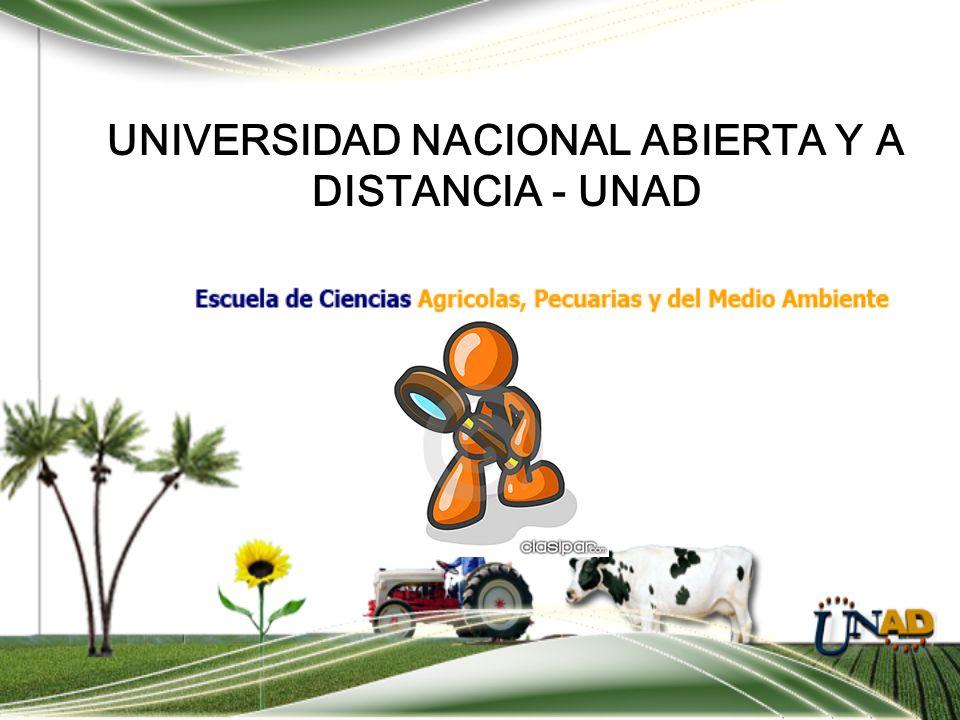 UNIVERSIDAD NACIONAL ABIERTA Y A DISTANCIA - UNAD TECNICAS DE INVESTIGACION Por: Ismael Dussán H. Ingeniero agrónomo, Candidato a Magister en Sistemas