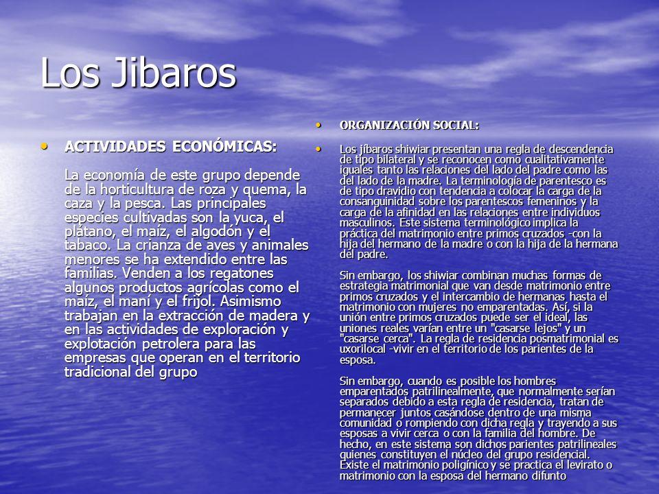 Los Jibaros ACTIVIDADES ECONÓMICAS: La economía de este grupo depende de la horticultura de roza y quema, la caza y la pesca.