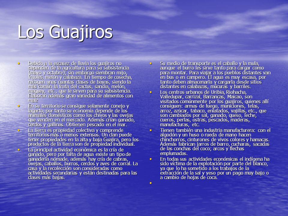 Los Guajiros Debido a la escasez de lluvia los guajiros no dependen de la agricultura para su subsistencia (mayo y octubre); sin embargo siembran mijo, frijoles, melón y calabaza.
