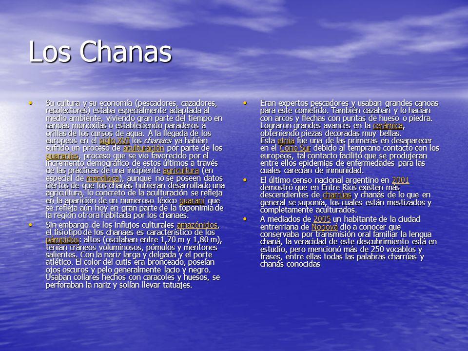 Los Chanas Su cultura y su economía (pescadores, cazadores, recolectores) estaba especialmente adaptada al medio ambiente, viviendo gran parte del tiempo en canoas monóxilas o estableciendo paraderos a orillas de los cursos de agua.