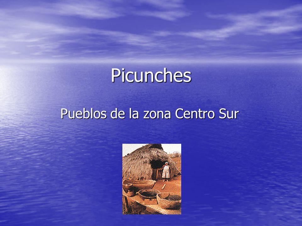 Picunches Pueblos de la zona Centro Sur