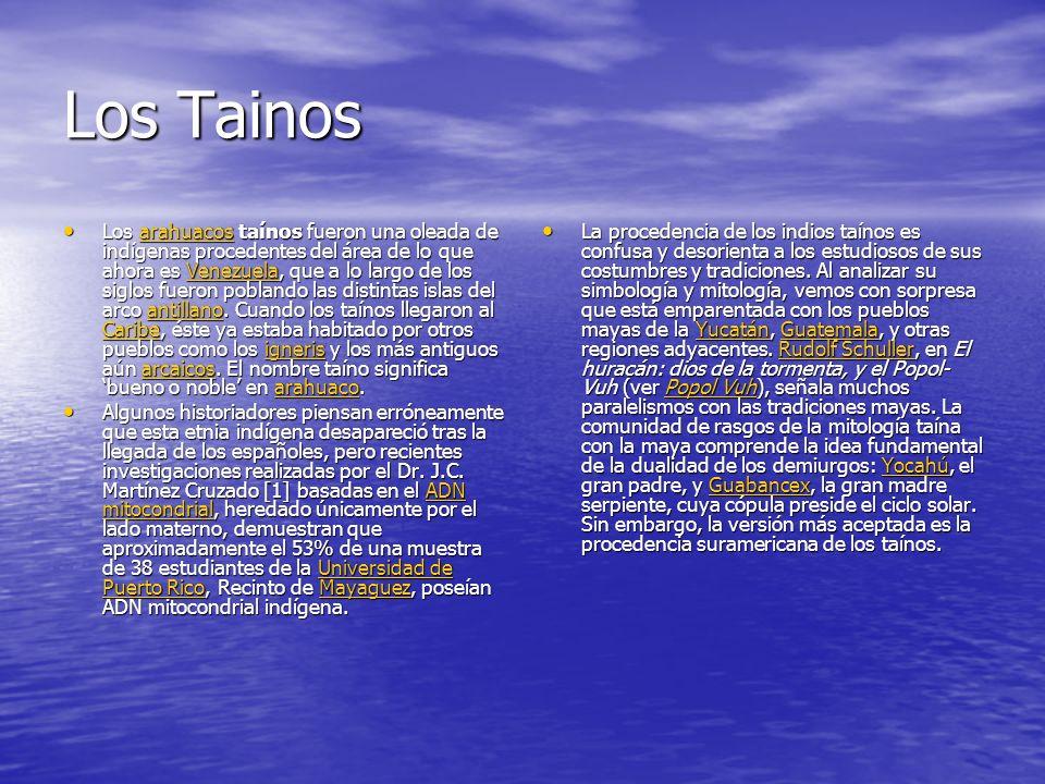 Los Tainos Los arahuacos taínos fueron una oleada de indígenas procedentes del área de lo que ahora es Venezuela, que a lo largo de los siglos fueron poblando las distintas islas del arco antillano.