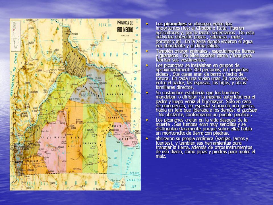 Los picunches se ubicaron entre dos importantes ríos: el Choapa e Itata. Fueron agricultores y, por lo tanto, sedentarios. De esta actividad obtenían