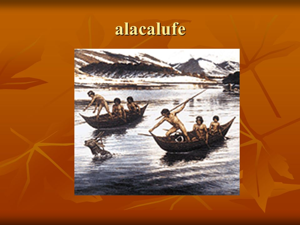 Actividades económicas Consistía principalmente en carne del lobo marino, nutria y carne de ballena; para cazar a estos mamíferos empleaban largos arpones.
