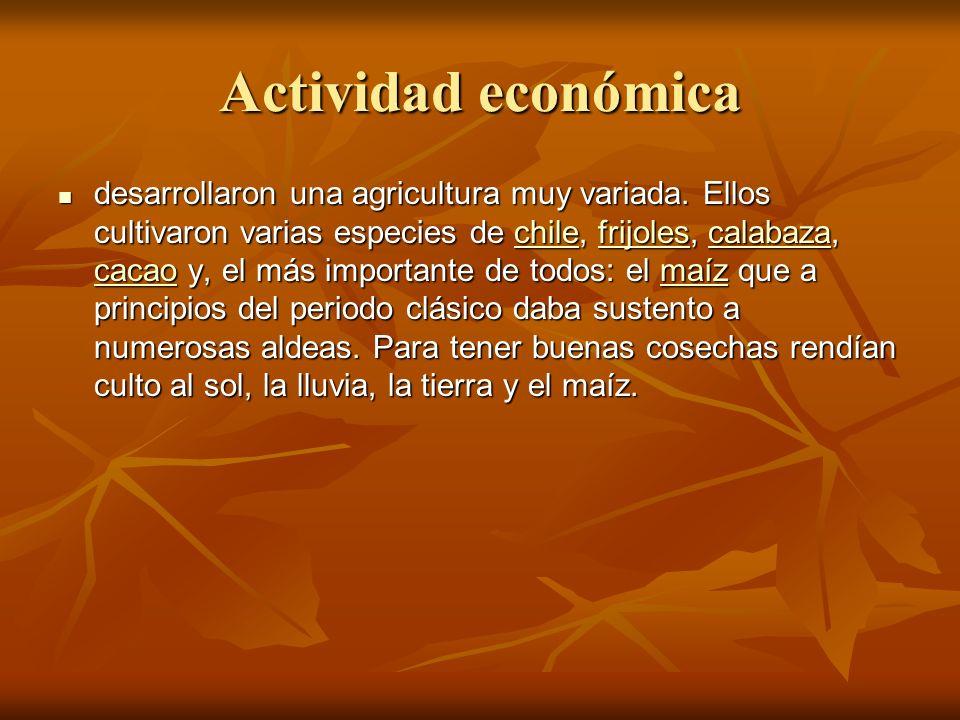 Actividad económica desarrollaron una agricultura muy variada.