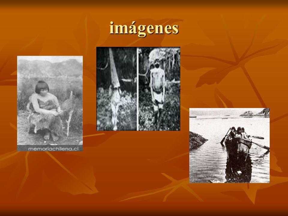 Actividades económicas de los taínos era la agricultura; para lo cual realizaban sembrados que llamaban conucos.