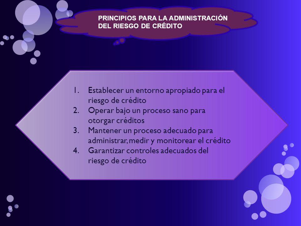 PRINCIPIOS PARA LA ADMINISTRACIÓN DEL RIESGO DE CRÉDITO 1.Establecer un entorno apropiado para el riesgo de crédito 2.Operar bajo un proceso sano para