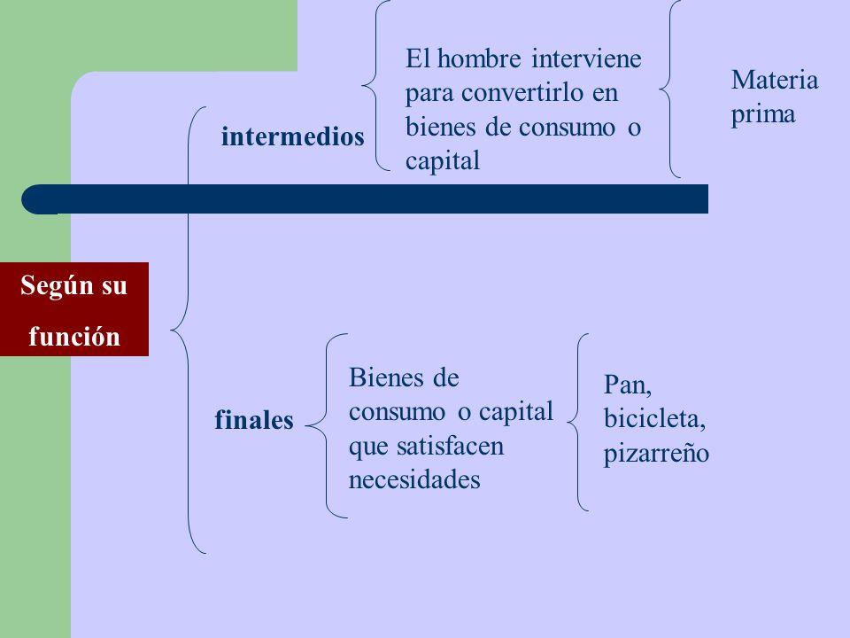 Según su función intermedios finales El hombre interviene para convertirlo en bienes de consumo o capital Materia prima Bienes de consumo o capital qu