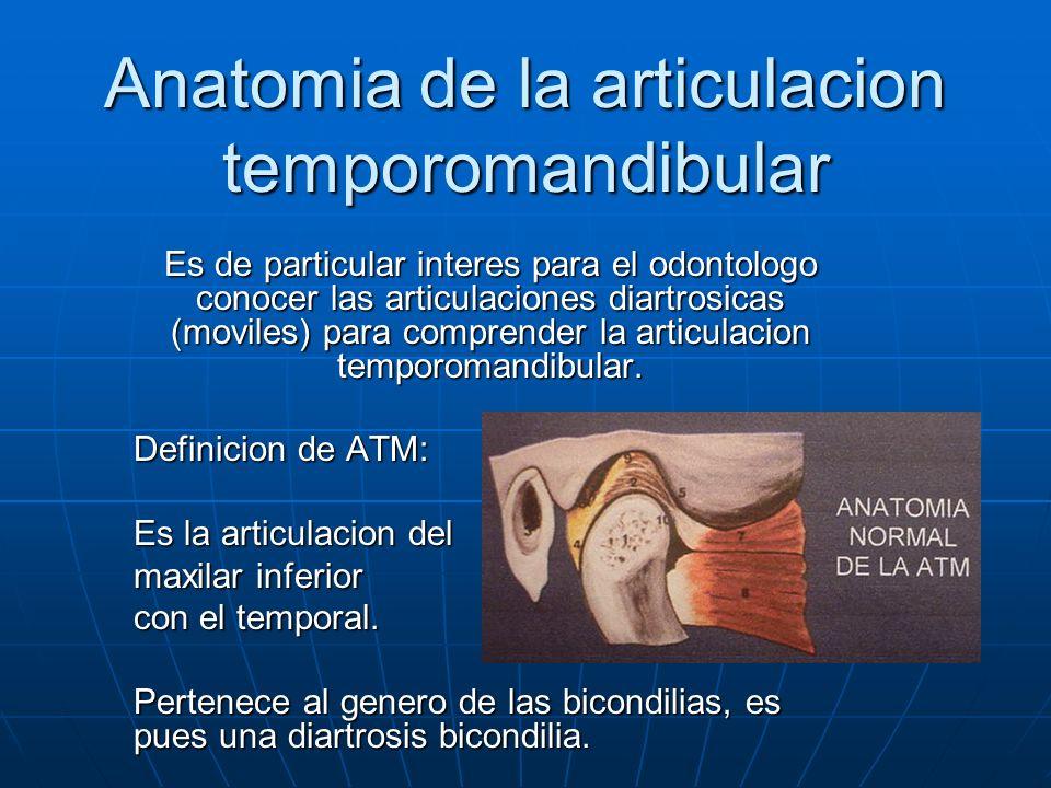 Anatomia de la articulacion temporomandibular Es de particular interes para el odontologo conocer las articulaciones diartrosicas (moviles) para compr