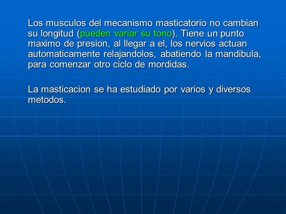 Los musculos del mecanismo masticatorio no cambian su longitud (pueden variar su tono). Tiene un punto maximo de presion, al llegar a el, los nervios