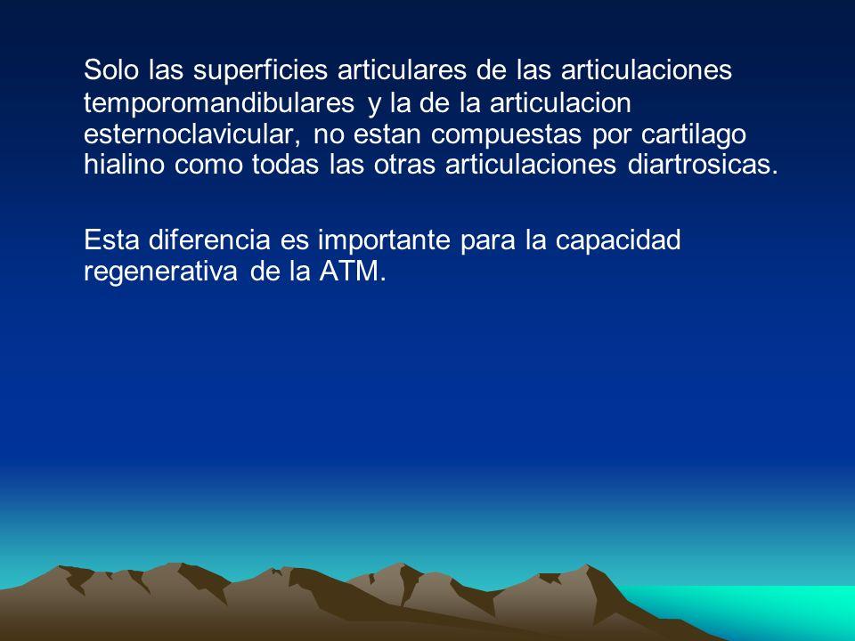 Solo las superficies articulares de las articulaciones temporomandibulares y la de la articulacion esternoclavicular, no estan compuestas por cartilag