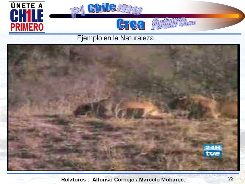 22 Relatores : Alfonso Cornejo / Marcelo Mobarec. Ejemplo en la Naturaleza…