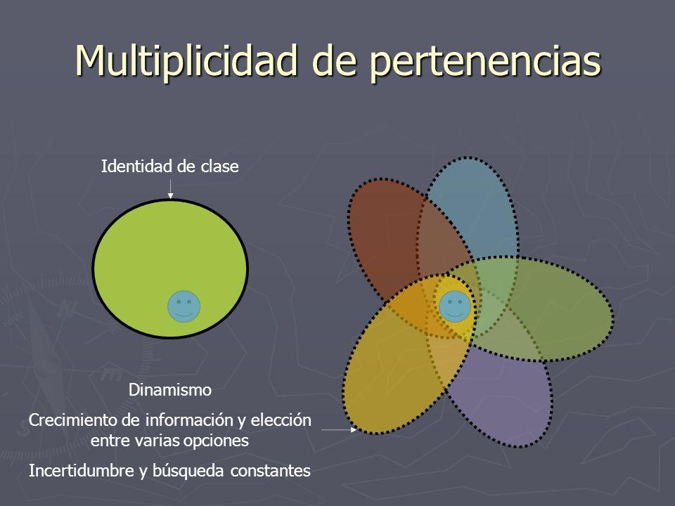 Multiplicidad de pertenencias Identidad de clase Dinamismo Crecimiento de información y elección entre varias opciones Incertidumbre y búsqueda consta