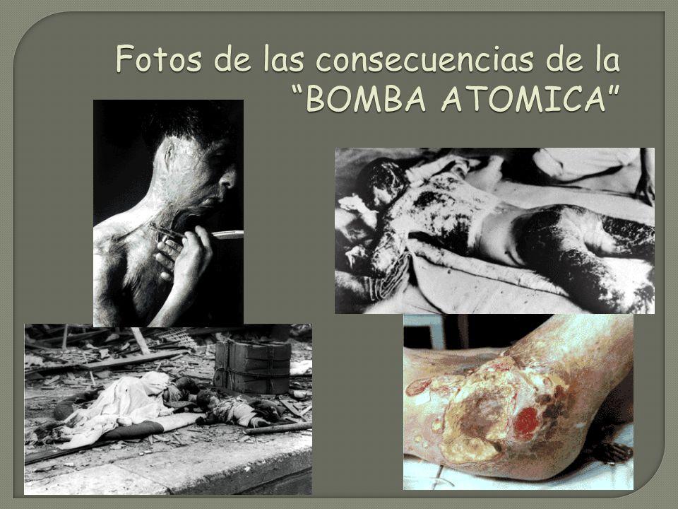 Fallecimiento de manera instantánea Después de la explosión nuclear especies como las cucarachas, moscas y ratas serian los grandes sobrevivientes a c