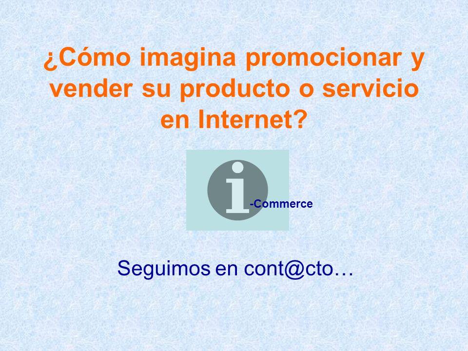¿Cómo imagina promocionar y vender su producto o servicio en Internet.