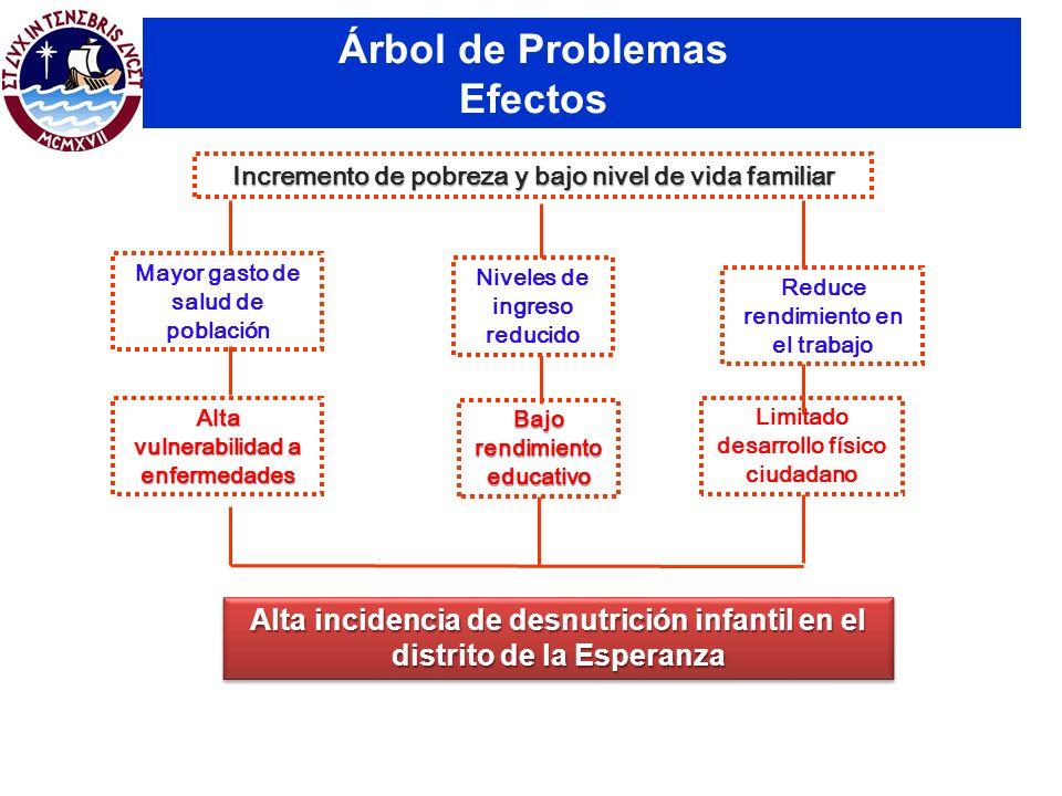 Árbol de Problemas Efectos Alta incidencia de desnutrición infantil en el distrito de la Esperanza Alta vulnerabilidad a enfermedades Bajo rendimiento