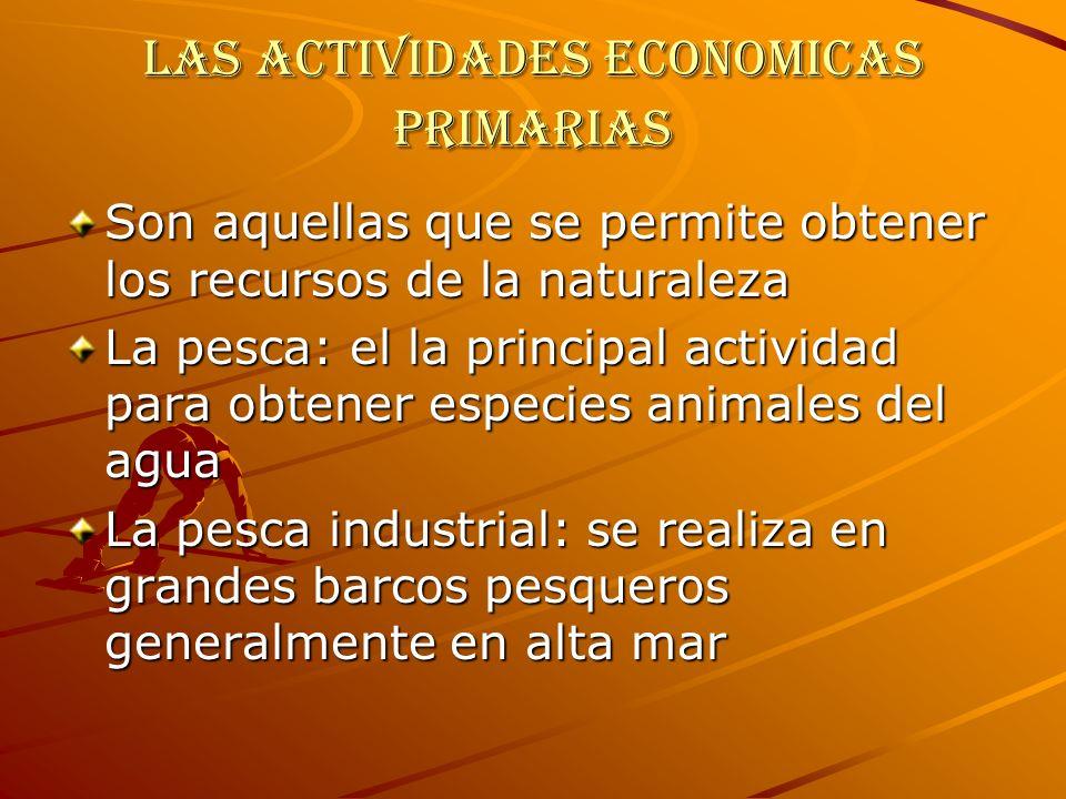Las actividades economicas primarias Son aquellas que se permite obtener los recursos de la naturaleza La pesca: el la principal actividad para obtene