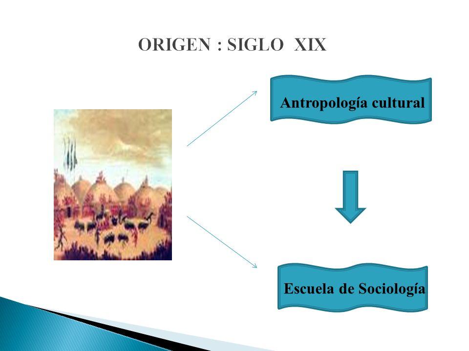 ORIGEN : SIGLO XIX Antropolog í a cultural Escuela de Sociolog í a