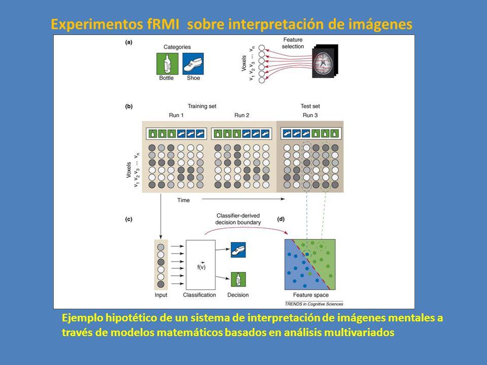 Ejemplo hipotético de un sistema de interpretación de imágenes mentales a través de modelos matemáticos basados en análisis multivariados Experimentos