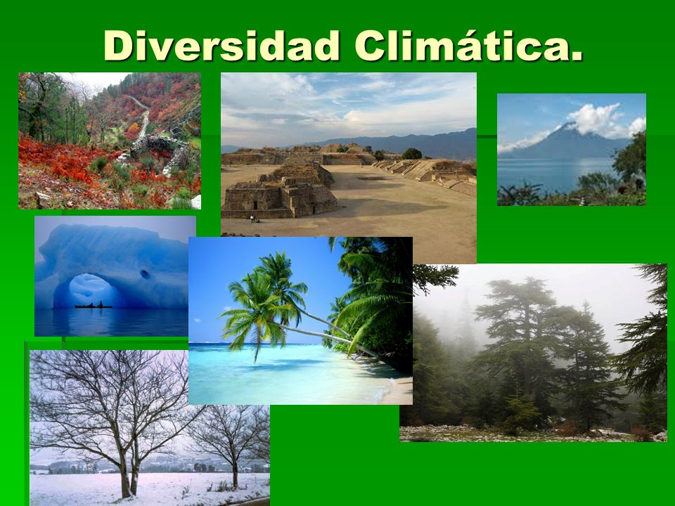 Caracterización de las zonas naturales de Chile Norte grande Norte Chico Zona central Zona sur Zona austral Zona insular