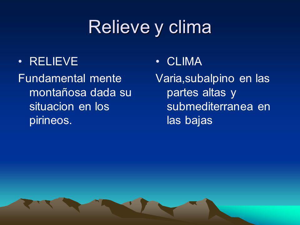 Relieve y clima RELIEVE Fundamental mente montañosa dada su situacion en los pirineos. CLIMA Varia,subalpino en las partes altas y submediterranea en