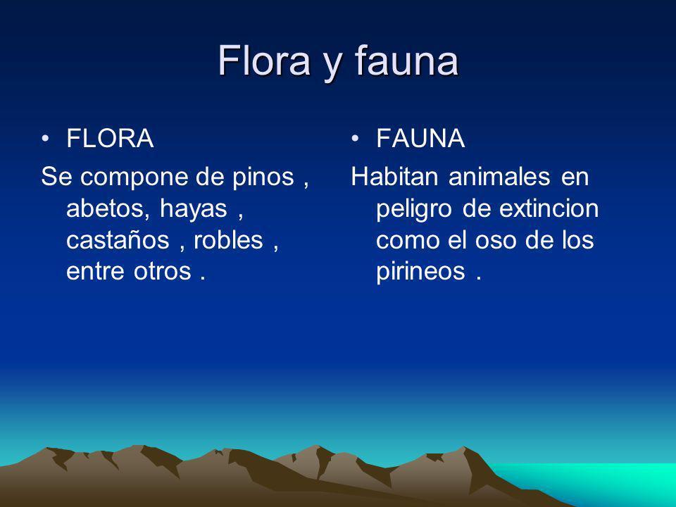 Flora y fauna FLORA Se compone de pinos, abetos, hayas, castaños, robles, entre otros. FAUNA Habitan animales en peligro de extincion como el oso de l