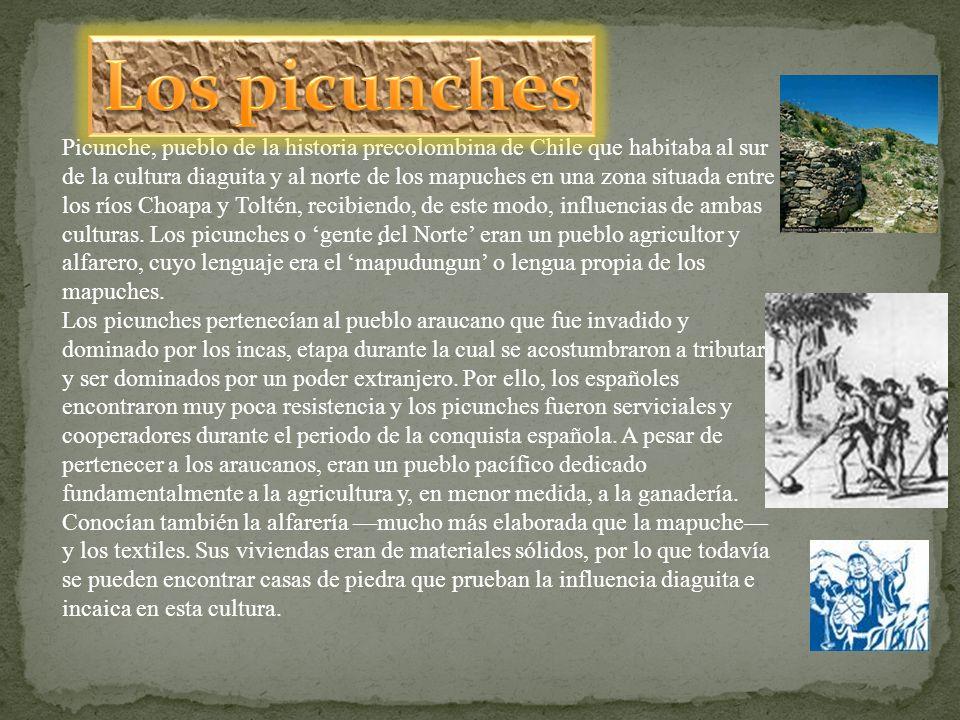 Picunche, pueblo de la historia precolombina de Chile que habitaba al sur de la cultura diaguita y al norte de los mapuches en una zona situada entre los ríos Choapa y Toltén, recibiendo, de este modo, influencias de ambas culturas.